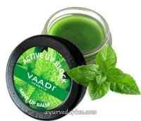 Бальзам для губ с мятой 6 грм Lip Balm Mint Vaadi Herbal